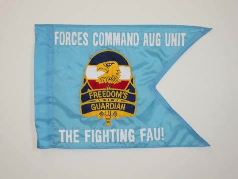 Forces Command Aug Unit