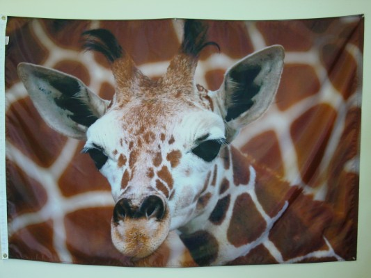 Giraffe - Digital Print Flag.JPG