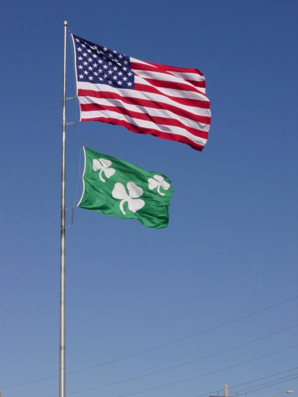 Shamrock 10x15 Big Flag.JPG