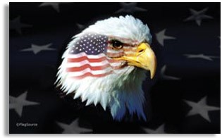 American Pride Flag