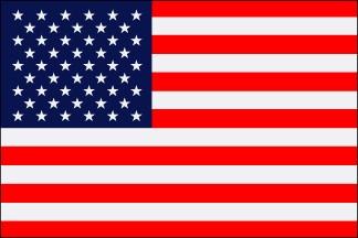 16x24in Mounted U.S. Flag