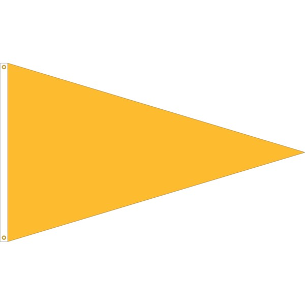Solid Color Action Pennant