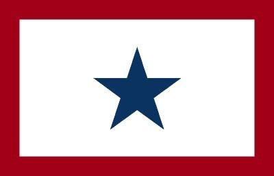Service Star Flag