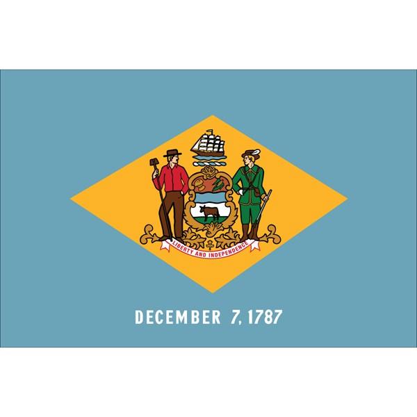 Delaware State Nylon Flag