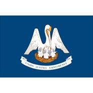 Louisiana State Polyester Flag