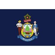 Maine State Nylon Flag
