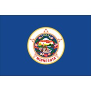 Minnesota State Polyester Flag