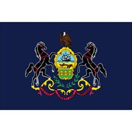 Pennsylvania State Polyester Flag