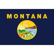 4x6in Mounted Montana Flag