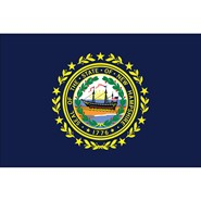 4x6in Mounted New Hampshire Flag
