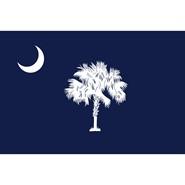 4x6in Mounted South Carolina Flag