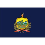 4x6in Mounted Vermont Flag