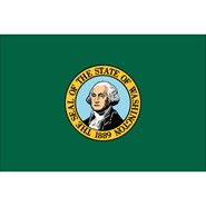 4x6in Mounted Washington Flag