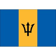 Barbados Nylon Flag