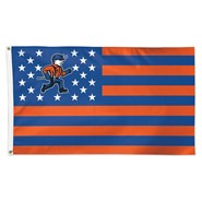 UW-Platteville Nation 3x5ft Flag