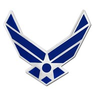 Air Force Wings Pin