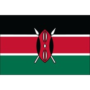 Kenya Nylon Flag