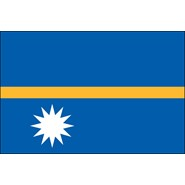 Nauru Nylon Flag