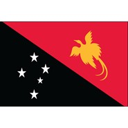 Papua New Guinea Nylon Flag