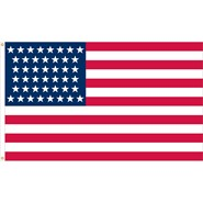 U.S. 44 Star Historical Flag