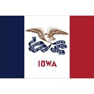 Iowa State Polyester Flag